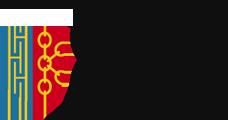 LogoSFpied